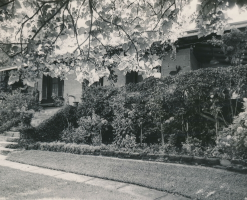 1 Figtree Road