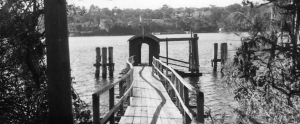 Mornington Wharf - Lane Cove River